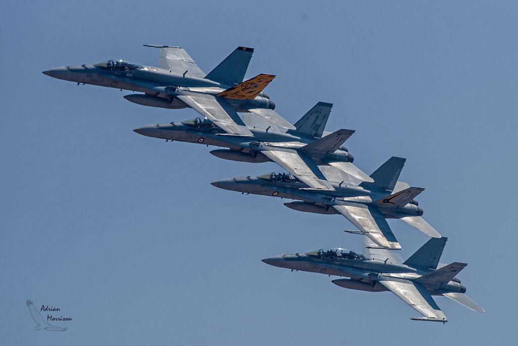 AM17501-Editcr1080-Hornets.jpg